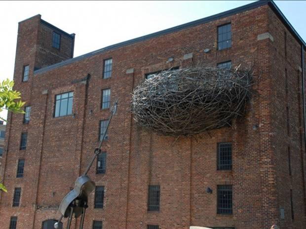 birdnest building