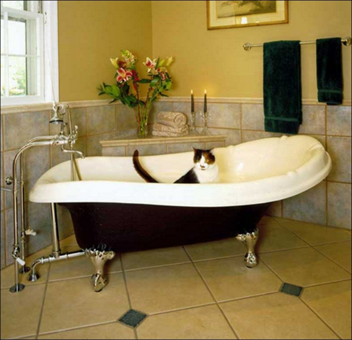 freestanding_tub_1